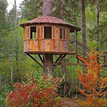 Gennaio 2014 gioco a fare l 39 architetto - Casa sull albero airbnb ...