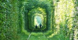 tunnel-verde-ucraina-e