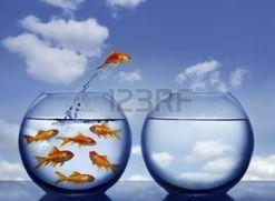 3764086-goldfish-che-salta-fuori-l-acqua-da-un-affollato-ciotola