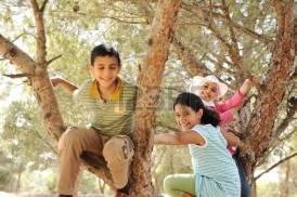 30047458-bambini-che-giocano-e-salendo-l-albero